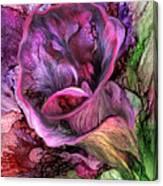 Wild Calla Canvas Print