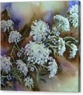 Wild Carrot -queen Anne's Lace Vignette   Canvas Print
