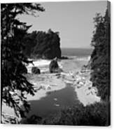 Wild Cove Canvas Print