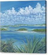 Wild Exumas Canvas Print