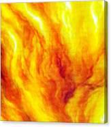 Wild Fire 03 Canvas Print