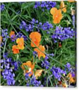 Wild Flowers Canvas Print