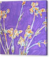 Wild Flowers On Lilac Canvas Print