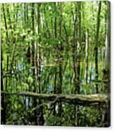 Wild Goose Woods Pond Iv Canvas Print