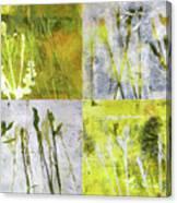 Wild Grass Collage 2 Canvas Print