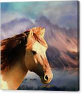 Wild Horse - Painting Canvas Print
