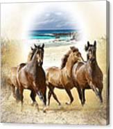 Wild Horses On The Beach Canvas Print