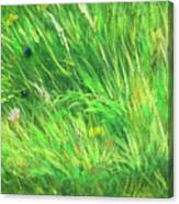 Wild Meadow Grass Structure In Bright Green Tones, Painting Detail. Canvas Print