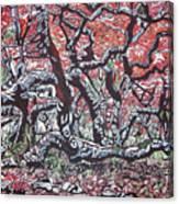 Wild Msasa Canvas Print