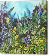 Wild Prairie Lupine Canvas Print