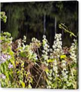 Wild Riverside Weeds And Flowers Canvas Print