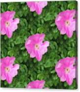 Wild Rose Pattern Canvas Print
