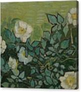 Wild Roses Saint-remy-de-provence, May-june 1889 Vincent Van Gogh 1853 - 1890 Canvas Print