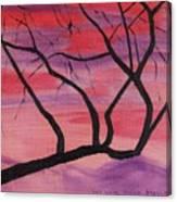 Wild Sky And Tree Canvas Print
