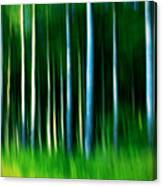 Wild Stripes Canvas Print