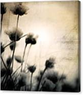 Wild Things - Number 3 Canvas Print