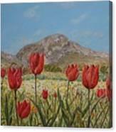 Wild Tulips In Central Crete Canvas Print