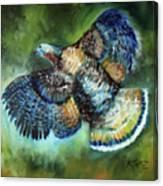 Wild Turkey In Flight Canvas Print