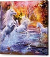 Wild Unicorns Canvas Print