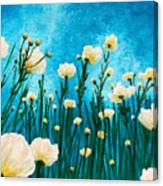 Poppies In The Blue Sky Canvas Print