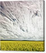 Wild Winds Canvas Print