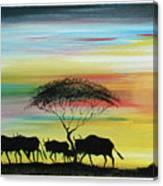 Wildbeest 1 Canvas Print