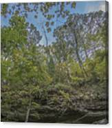 Wildcat Den Cliffs And Trees In Fall Canvas Print