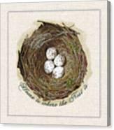 Wildcraft Nest On Linen Canvas Print