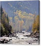 Wilderness Beauty Canvas Print
