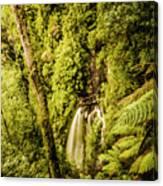 Wilderness Falls Canvas Print