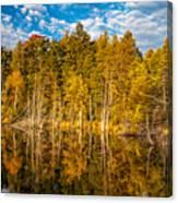 Wilderness Pond 3 Canvas Print