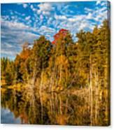 Wilderness Pond  Canvas Print
