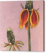 Wildflower 1 Canvas Print
