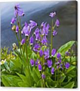 Wildflower Cascade Canvas Print