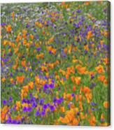 Wildflower Dream Canvas Print