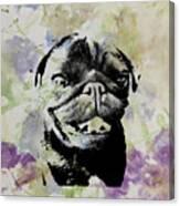 Wildflower Pug Canvas Print