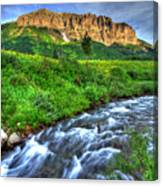 Wildflower River Canvas Print