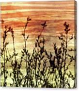 Wildflower Sunrise Canvas Print