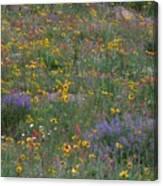 Wildflowers Abundance Canvas Print