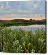 Wildflowers Along Nippersink Creek In Hackmatack Nwr Canvas Print