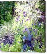Wildflowers And Cactuses Canvas Print