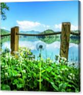 Wildflowers At The Lake In Spring Canvas Print