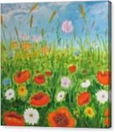 Wildflowers Field Canvas Print