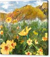 Wildflowers In The Desert Canvas Print