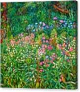Wildflowers Near Fancy Gap Canvas Print