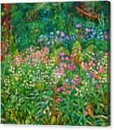 Wildflowers Near Fancy Gap Canvas Print