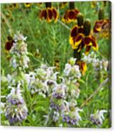 Wildflowers Seven Canvas Print