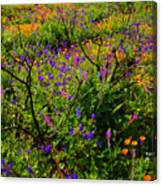 Wildflowerscape Canvas Print