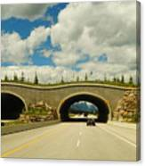 Wildlife Crossing Canvas Print
