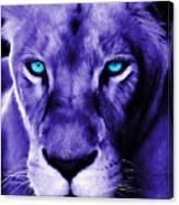 Wildlife Lion 12 Canvas Print